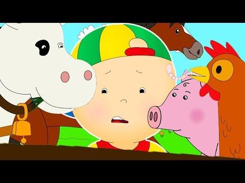Caillou em Português ★ Caillou e os Animais de Fazenda ★ Episódios Completos ★ Desenho Animado