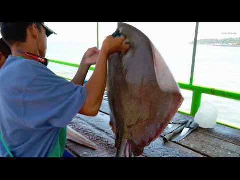 Fish cutting: Stingray -  Seafood in El Salvador