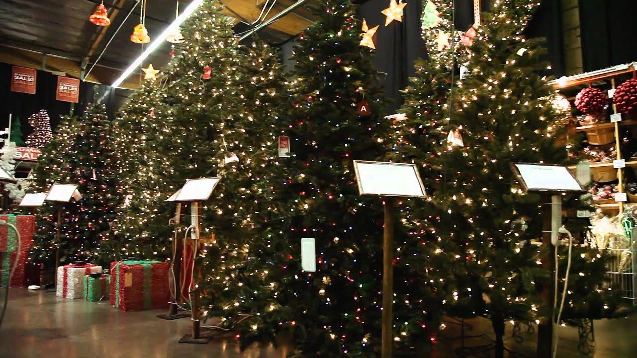 barcana - Barcana Christmas Trees