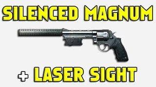 BF3 Silenced Magnum with a Laser sight in Battlefield 3.