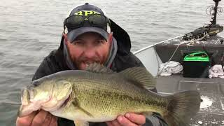 Tightline Outdoors LIVE with Nate Zelinsky and Special Guest Matt Endsley