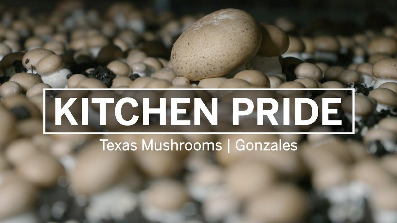 Kitchen Pride Texas Mushrooms Youtube