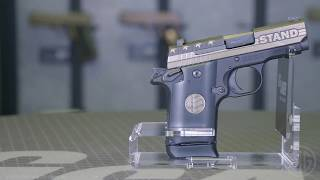 SIG P938 STAND