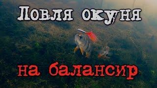 Рыбалка: ловля окуня на балансир, подводная съемка. Fishing perch, underwater cam