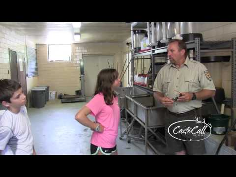 Cast And Call Outdoors - Show #70 - Norfork National Fish Hatchery