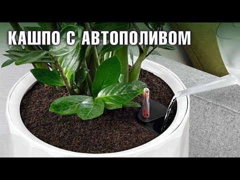 Кашпо с автополивом💧 для комнатных растений 🌻
