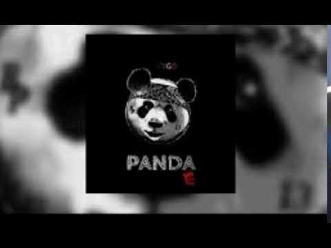 CYGO PANDA E MP3  #3