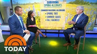 How To Survive Spring Allergies — And Prevent Them Before Symptoms Start | TODAY
