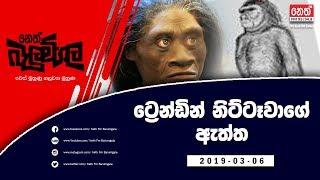 Balumgala | Nittawa - 06th March 2019