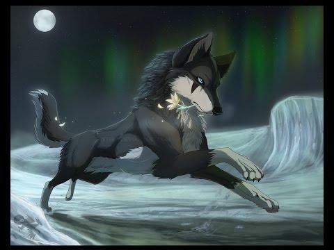 Коты воители в образе волков!