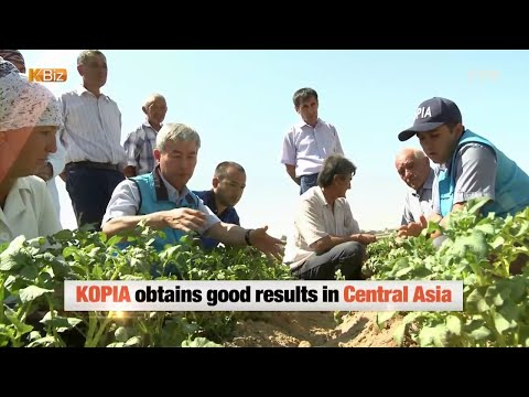 'Agricultural Hallyu' in Uzbekistan / YTN KOREAN
