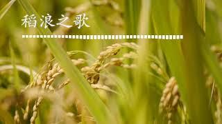 Dao lang zhi ge - karaoke (music by endy kho)