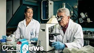 Venezuela Is Losing Its War on Infectious Diseases