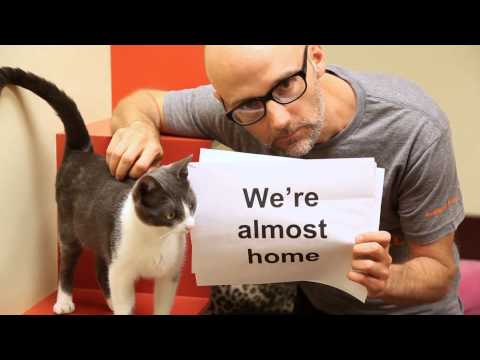 Moby - Almost Home (Best Friends Animal Society Lyric Video) with Damien Jurado