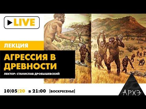 Ночной АРХЭфир «Агрессия в древности» в лекции С.В. Дробышевского