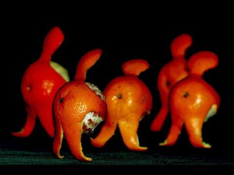 Карвинг из фруктов Похитители мандаринов. Карвинг из фруктов для начинающих.