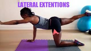 QUADRUPED LATERAL EXTENSIONS