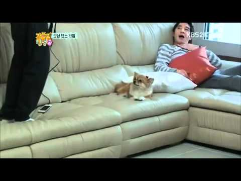 [CUT] ZE:A Siwan Singing I Need a Girl by Taeyang
