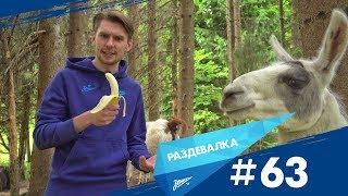 «Раздевалка» на «Зенит-ТВ»: выпуск №63