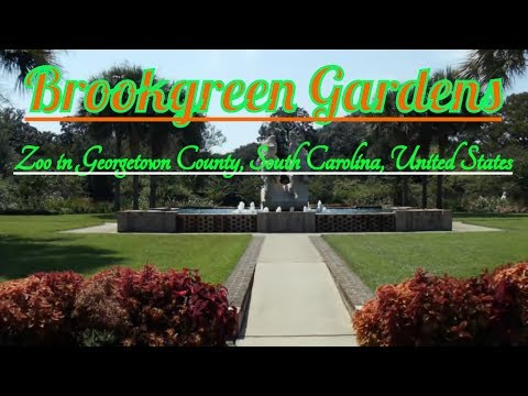 Visiting Brookgreen Gardens, Zoo in Georgetown County, South Carolina, United States