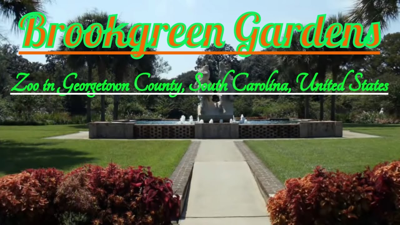 Visiting Brookgreen Gardens, Zoo in Georgetown County, South ...