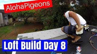 Homing Racing Pigeon Loft Construction Day 8