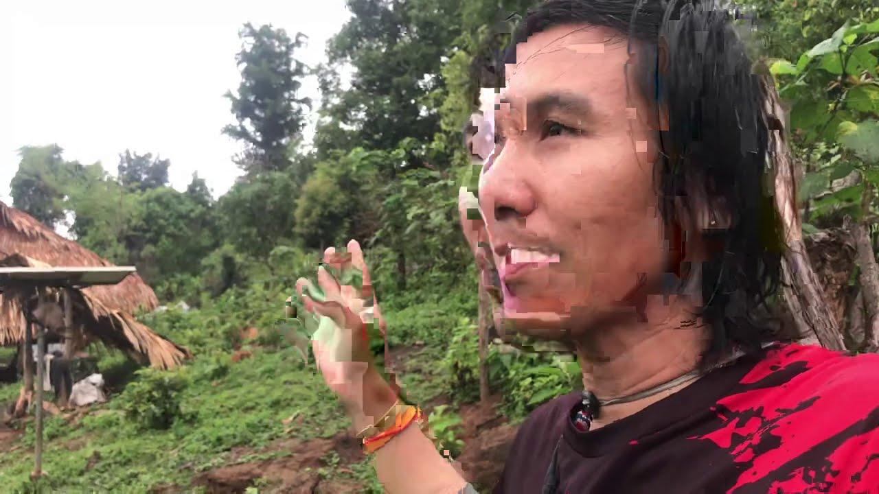 Vlog วนไปตามทาง EP45 ใช้ชีวิตในป่า ฟินมากเช้ามานี่สดชื่น