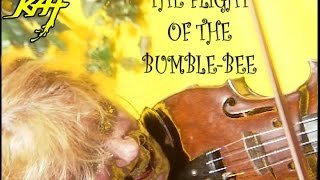 """THE FLIGHT OF THE BUMBLE-BEE""-GREAT KAT Juilliard Grad Violin Virtuoso SHREDS on Guitar AND Violin"