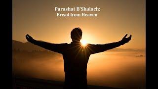 Jerusalem Lights Parashat B'Shalach 5781: Bread from Heaven