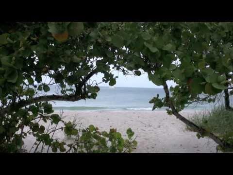 Naples Beaches, Florida