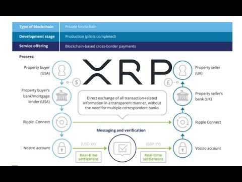 large-investors-keep-buying-xrp-and-ripple-in-real-estate-transactions