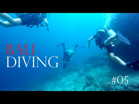 THE PLACE TO DIVE IN BALI 🐏 UNKNOWN ISLAND MENJANGAN✔Worldtravel Vlog#69 Indonesia Adventure Travel