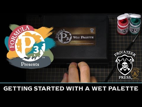 Formula P3 Presents: Getting Started with a Wet Palette