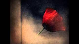 MICHEL COLOMBIER - LE SOLITAIRE