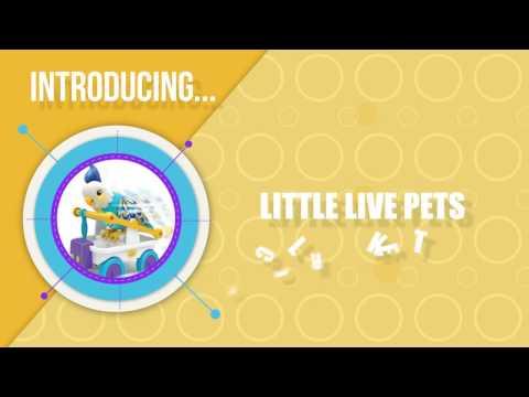 Little Live Pets CleverKeet Interactive Talking Dancing Bird Toy Review