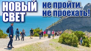Crimea. New World. Crowds on Cape Kapchik! Juniper grove and sea. Rest in Crimea 2019