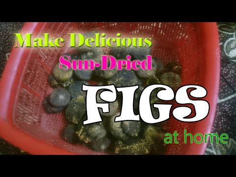 Sun Drying Figs How To Make Sun Dried Figs Doovi