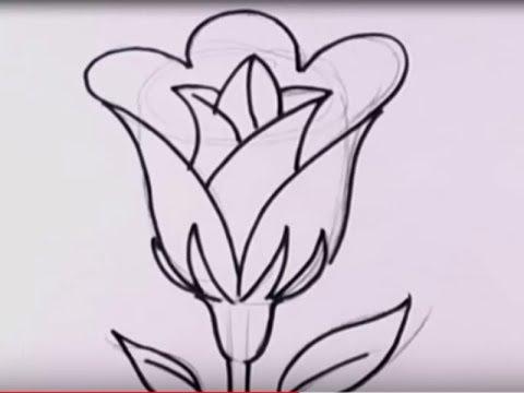 رسم وردة للمبتدئين خطوة بخطوة Youtube