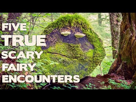 Five TRUE Scary Fairy  Encounters (True Fairy Encounters - Collaboration with Darkness Prevails)