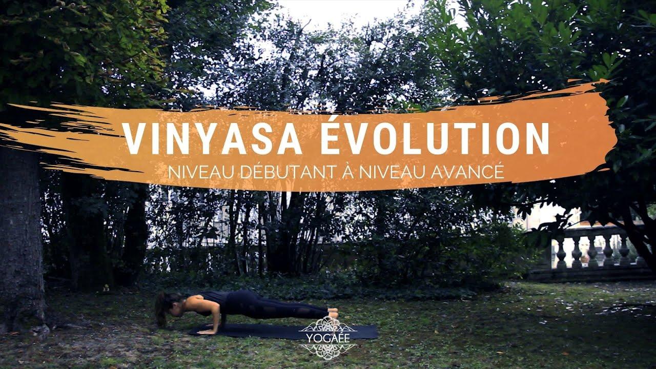 Vinyasa Evolution - Niveau débutant à avancé
