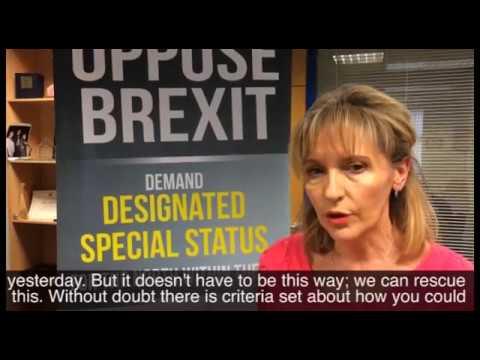 Martina Andesron MEP on Capital Bid