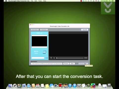 WaveInsight Video Converter Lite - Convert audio and video - Download Video Previews