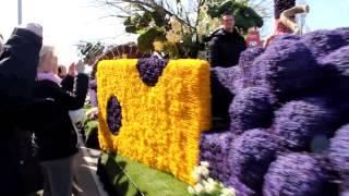 Фестиваль цветов в Голландии Keukenhof 2013(Видео с фестиваля цветов в Голландии - Keukenhof 2013., 2013-04-24T21:24:44.000Z)