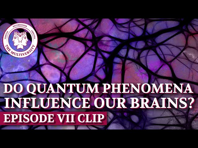 Do Quantum Phenomena Influence Our Brains?