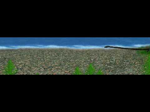 Dinosaur Safari (Late Triassic) Clip #11: Tanystropheus
