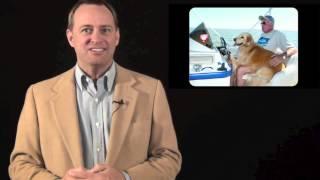 New York Golden Retriever Puppy Breeder Review—golden Retrievers New York