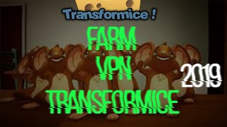 Transformice Pirata 2019 - CheeseTf