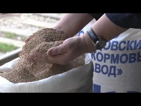 Кольцовский комбикормовый завод. Производитель комбикорма.