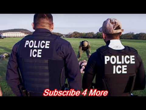 ICE Arrests 115 In San Diego Immigration Sweep