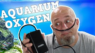 Are Aquarium Air Pumps Oxygen …